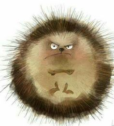 "♡☆ ""I Am a Grumpy Hedgehog!"" ☆♡"