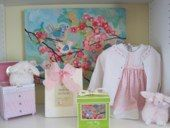 Baby bird painting and light pink baby clothes and accessories for a new baby girl!