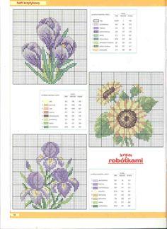 clematis.gallery.ru watch?ph=AWM-2Ls2&subpanel=zoom&zoom=8