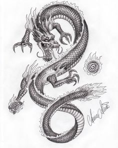 Drawn chinese dragon oriental dragon #738
