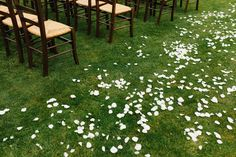 Make your wedding ceremony pop with a white rose petal aisle. Simple and Romantic! Rose Petal Aisle, Rose Petals, Wedding Ceremony, Wedding Venues, Reception, Beautiful Space, Simple Weddings, Spa Day, White Roses
