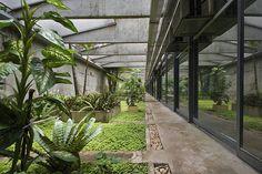 National Congress of Brazil, Brasilia  Senate & Chamber of deputies.    Subterranean gardens.    Architect: Oscar Niemeyer 1958.  Landscape architect: Roberto Burle Marx