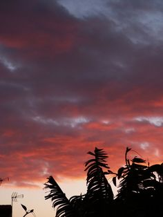 Canary Islands Photography: 25 Feb Sunset Maspalomas Gran Canaria