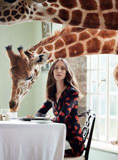 Harper's Bazaar UK Março 2014 | Alana Zimmer por Liz Collins [Editorial]