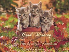 Mějte dnes krásný den plný zázraků a splněných snů...