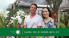 Nô Figueiredo no Orquidário Paulista: Como Adubar Orquídeas - Parte 2 co...