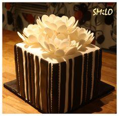 SHY70 stripped cake 3