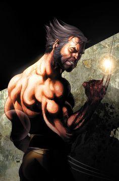 Wolverine by Salvador Larroca
