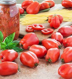 San Marzano tomato is famous for its plum-type fruit and sweet flavor. Use San Marzano tomatoes for canning or in pasta sauces. Find out more here. Growing Tomatoes From Seed, Types Of Tomatoes, Growing Tomato Plants, Growing Tomatoes In Containers, Growing Seeds, Grow Tomatoes, Baby Tomatoes, Canning Tomatoes, Roasted Tomatoes