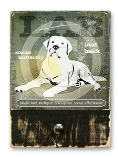 #Lab  #ruckusdog #ruckusdogproducts