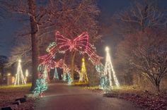 Holiday Light Fantasia, Hartford CT
