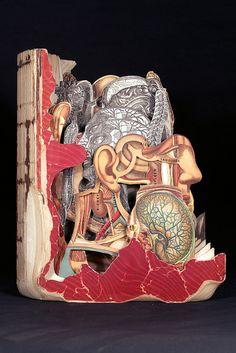 "Brian Dettmer  Health and Longevity,  2010,  Altered Book,  9-5/8"" x 8-1/4"" x 5-1/2"""