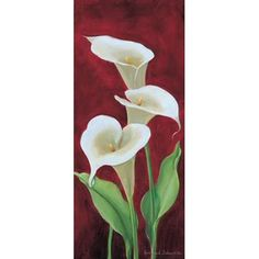 Calla on burgundy III Canvas Art - Gertrud Schweser x Calla Lillies, Calla Lily, Watercolor Flowers, Watercolor Paintings, Lily Painting, Image 3d, Beautiful Paintings, Painting Inspiration, Flower Art