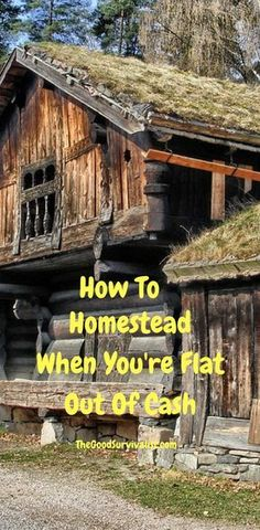 In this rough economy many people just don't have a lot of money. Most though have enough to get by and do okay with limited resources. In this post we are going to discuss how to homestead when you are just about flat broke. http://www.thegoodsurvivalist.com/how-to-homestead-when-youre-flat-out-of-cash/