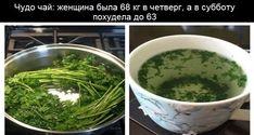 Чудо чай: женщина была 68 кг в четверг, а в субботу похудела до 63 (рецепт) | Женские темы
