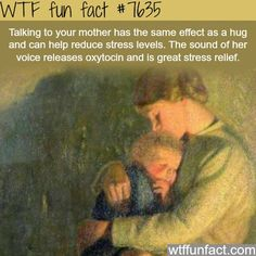 Talking to your mom can help your stress levels - WTF FUN FACTS. It's pretty much the exact opposite! The More You Know, Good To Know, Did You Know, Wtf Fun Facts, Crazy Facts, Random Facts, Odd Facts, Strange Facts, Random Things