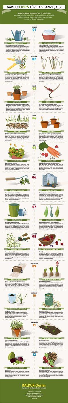 Tipps fürs Gartenjahr (German garden year)