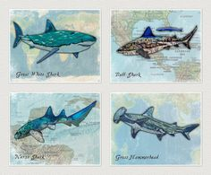 Sharks! Set of FOUR Super Cool Trendy Wall Art/Prints. Big kids animal art Perfact decoration for ocean/sea/pirate themed bedroom