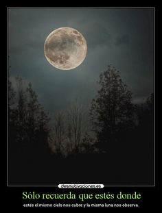 La Luna she speaks to us all in the unconscious realm of sleep Moon Moon, Moon Rise, Moon Art, Blue Moon, Over The Moon, Stars And Moon, Wow Photo, Perfect Photo, Harvest Moon