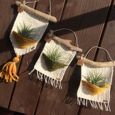 Diy Crafts - Air plants woven wall hanging woven wall hanging home decor Macrame Design, Macrame Art, Macrame Projects, Crochet Projects, Weaving Art, Tapestry Weaving, Woven Wall Hanging, Hanging Plants, Crochet Wall Hangings
