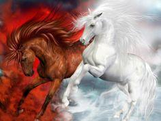 Download Beautiful Horses Wallpaper 1024x768 | Full HD Wallpapers