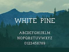 94 Best Free Fonts for Summer 2015 - White Pine is a free serif font with a hand drawn feel. Typography Letters, Typography Design, Hand Lettering, Police Avec Serif, Design Blog, Web Design, Type Design, Gratis Fonts, Hipster Fonts