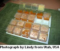 Pureed baby food recipes (sweet potato is the one I want from this page)