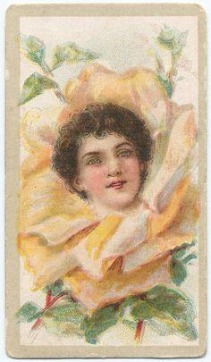Beauties - Flower Girls ~ British American Tobacco Co. British American Tobacco, Library Services, New York Public Library, Vintage Ephemera, Vintage Advertisements, Flower Children, Flower Girls, Art Nouveau, Scrap