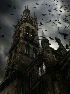 University of Glasgow, Scotland.