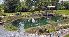 Ever since I learned about them, I've wanted a natural swimming pool.  I remember the maintenance of having a regular pool in our back yard.  No Thanks!