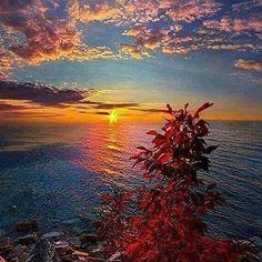 #Repost @capochino67 via @stevekrohn via @viannavalente #sunset #sun #nature #sky #clouds #skyporn #cloudporn #ocean #beautiful #bestoftheday #instagood #like4like #followme #happy #awesome #amazing #light #Imagine #Idyll