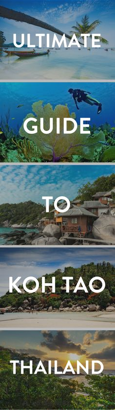 Koh Tao Thailand | Planning a trip to Koh Tao Island? Here is everything you need to know about this stunning island. From where to stay, what beaches to visit, and what to do!