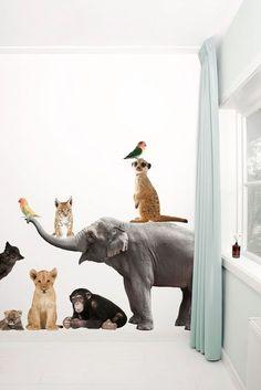 Set van 9 dieren, incl. Olifant XL (163 x 94 cm) √ Premium Quality √ Supermatte uitstraling √ Geen witte of transparante randen