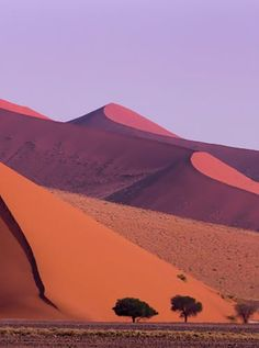 Namib-Naukluft National Park, Namibia This national park and nature reserve occupies part of the Namib Desert. Wild game like mountain zebras, ostriches and kudus roam over the red sand dunes.