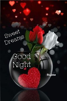 White And Red Rose Goodnight evening goodnight good night goodnight quotes good evening goodnight blessings beautiful good night quotes Good Night Love Messages, Good Night Love Quotes, Good Night Prayer, Good Night Friends, Good Night Blessings, Good Night Greetings, Good Night Wishes, Beautiful Good Night Images, Romantic Good Night
