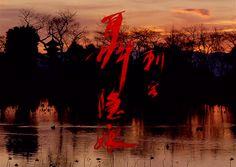 Rays of Cinema — THE ASSASSIN (2015) Directed by Hou Hsiao-Hsien...