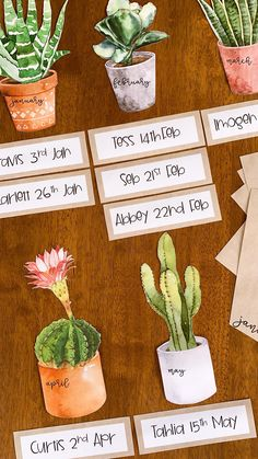 Made to match our other CACTUS Classroom Decor, this gorgeous birthday display will bring a sense of belonging to your classroom. With three different designs to choose from, the slides easily be edited to add your own student's names and birth dates. Birthday Display In Classroom, New Classroom, Classroom Setting, Classroom Design, Classroom Displays, Classroom Themes, Classroom Organization, Birthday Calendar Classroom, Classroom Supplies