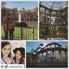 #Repost @talliecat255 The Crystal Palace  #madrid #crystalpalace #spain #beautiful #fallfoliage #touristday #bestfriends #studyabroad #ispyapi #españa