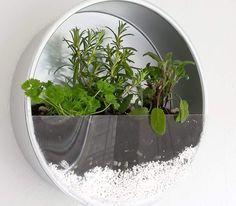 Baking Tin Herb Planter