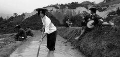 La poesía audiovisual del artista chino Yang Fudong en Cuba