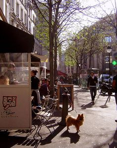 Printemps dans le Marais by maralina!, via Flickr