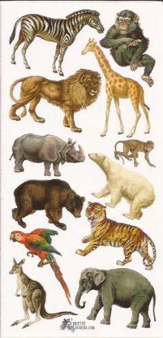 Dierentuin Wilde dieren poezieplaatjes Stickers P59