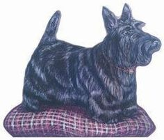 """SCOTTIE DOOR STOP by Stupell. $25.00. SCOTTIE DOOR STOPdoor stop approx. 10""""x18"""", paper laminated onto wood. back is plain wood with 2""""x5"""" triangular wedge that is used to hold door open.***This item is expected to deliver in 10-15 business days. Tracking information is usually sent within 7-14 business days from the date of the purchase. This item does not ship to Alaska or Hawaii. The item also does not ship to P.O. boxes or APOs.***. Save 50% Off!"""