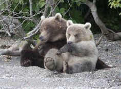 Russia, Kamchatka | Flickr - Photo Sharing!