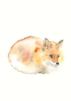 Fox Fine Art Print from Original Watercolor Painting by dearcatherina on Etsy https://www.etsy.com/listing/250887776/fox-fine-art-print-from-original