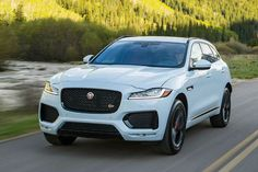 16 Jaguar Ideas Jaguar Jaguar Car Jaguar Suv