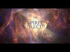 Epifiz III (DMT) - YouTube