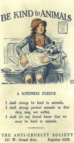 fight cruelty of all kinds.... here is to a kindess pledge