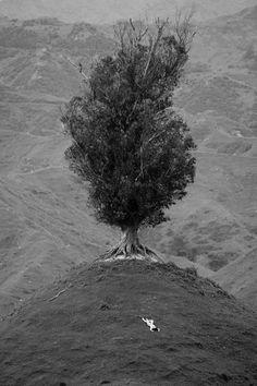 Nudes-in-Landscape,john crawford