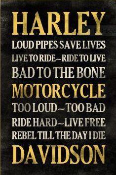 Harley Davidson. This describes my dad :)
